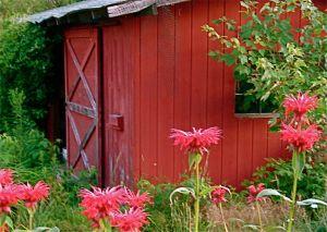 barnandflowers