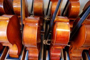 cellos1