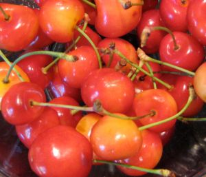 raniercherries