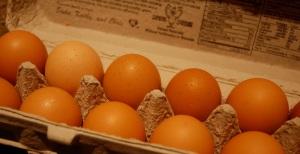eggsinabox