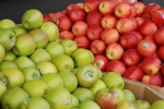 applesatstore