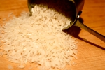ricegrains